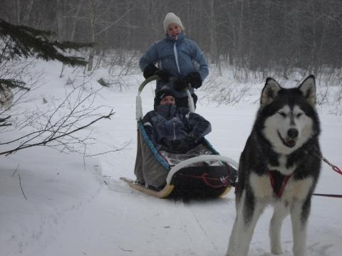 Traîneau à chiens sur le lac Emmuraillé