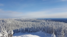 La neige à profusion